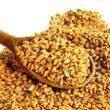 Cucchiaio di cereali integrali