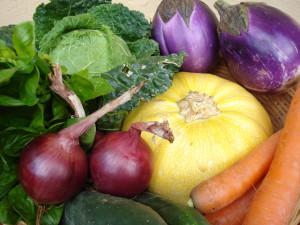 Verdure di stagione: Settembre