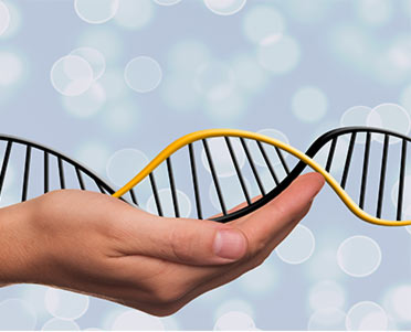 dna in mano